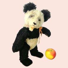 "Steiff Panda Teddy Bear 14"" vintage 1951 to 61 only"