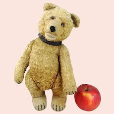 """Steiff teddy baby bear vintage early 1930s cotton plush 12"""" well loved"""