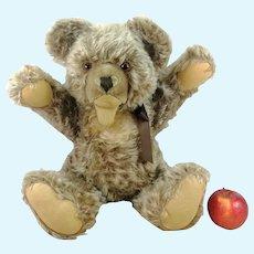 """Steiff Teddy Bear Zotty large 20"""" tall produced 1951 to 1964"""