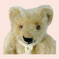 """Steiff Teddy Bear produced 1949 or earlier small 6"""" blond mohair"""