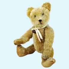 "German Teddy Bear 1910s by Eduard Crämer EDUCA 16"" well loved"