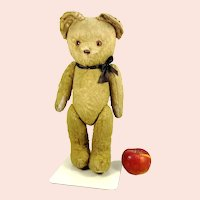 """Vintage Teddy Bear unknown maker wool plush 16"""" leather nose"""