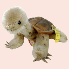 Steiff Turtle Slow all IDs smallest mint 1961 to 1964 vintage