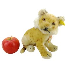 "Steiff young lion with all ID's, vintage made 1955 – 58 only, large 7"" sitting mohair lion"