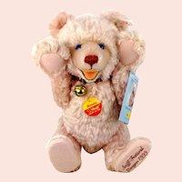 "Steiff Rosey Teddy Baby special bear for 1999 Festival all IDs 12"" mint"