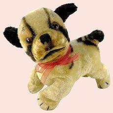 "Steiff Bulldog Bully midi 6"" vintage 1952 to 1962"