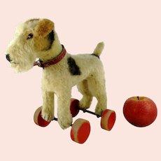 """Steiff Foxterrier on eccentric wooden wheels 7"""" vintage 1949 to 1961"""