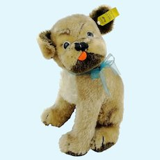 """Steiff pug Mopsy, with IDs, largest 9"""" edition, 1960s vintage"""
