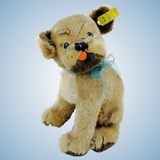 "Steiff pug Mopsy, with IDs, largest 9"" edition, 1960s vintage"