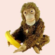 "Steiff Chimp Jocko Ape Monkey all IDs 19"" vintage 1954 to 1958 working squeaker"