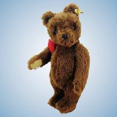 """Steiff teddy bear with IDs, 16"""" brown mohair OTB, 1959 to 1964"""
