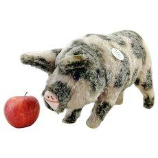 """Steiff 1926 Pig Replica, all IDs, 1995 made, 14"""" long, hug-me squeaker"""
