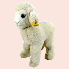 Steiff Lamb Sheep Cosy Lamby vintage 1985 to 1988 with IDs 8 inches tall