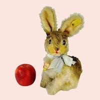 Steiff Bunny Rabbit Sonny all IDs largest oldest 1964 vintage
