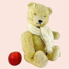 Polar Bear Teddy 17 inches tall wool plush vintage 1950s German made