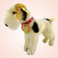 """Steiff Foxterrier with all IDs, 7"""" mohair dog, 1959 to 62 vintage made"""