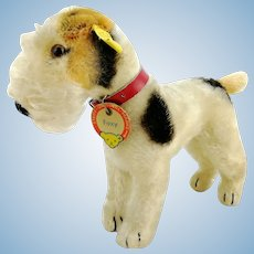 "Steiff Foxterrier with all IDs, 7"" mohair dog, 1959 to 62 vintage made"