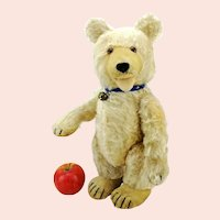 """Steiff teddy baby bear, large 15"""", 1930 to 1943, active double squeaker"""