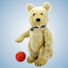 "Steiff teddy baby bear, large 15"", 1930 to 1943, active double squeaker"