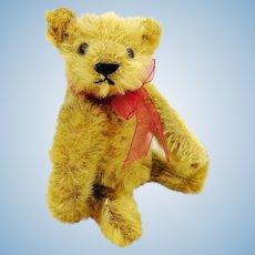 Steiff golden mohair 5 inches miniature bear, 1919 to 1964