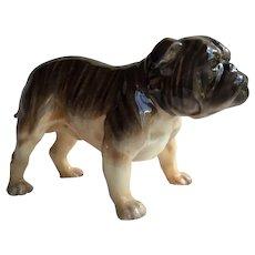 Vintage Royal Doulton Brindle English Bulldog Figurine