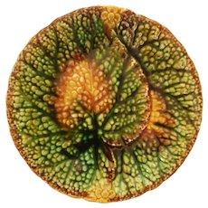 Majolica Leaf Plate