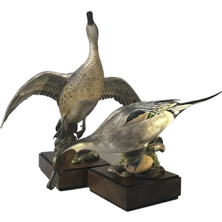 Ronald Van Ruyckevelt For Royal Worcester Porcelain, Pair Of American Pintail Birds