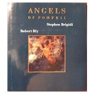 Angels of Pompeii Art Book Stephen Brigidi and Robert Bly