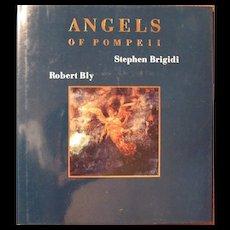 Angels of Pompeii Art Book Stephen Brigidi and Robert Bly