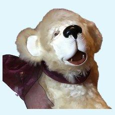 "KODIAK - OOAK award winning Artist Bear at TOY FAIR 1998 by Lulu Tatum - 15"""