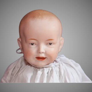 Rare perfect all bisque German character baby doll - A. Wislizenus (circa 1915)