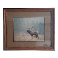 Denver Bryan 1989 limited edition signed Elk photo