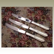 Wm Rogers Silverplate Memory Dinner Knives