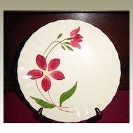 Southern Potteries Blue Ridge Enchantment Dinner Plate