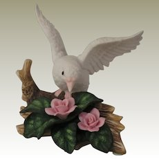 White Dove on a Log with Pink Roses from the Wellington Collection