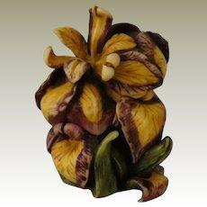 Harmony Kingdom Harmony Garden  Iris II Treasure Jest Box Figurine