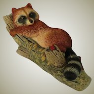 Bossons of  England Raccoon Wall Plaque from Wild Life Series