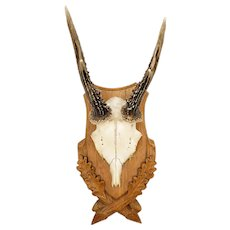 Black Forest Roe Deer Antlers on Carved Wood Plaque