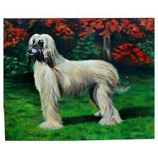 Large Oil Painting of Dog Afghan Hound Signed by Artist