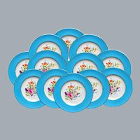 12 Botanical Dinner Plates by Royal Worcester Unused