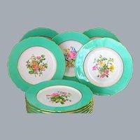 12 English Copeland Spode Dinner Plates Pale Green Border Hand painted Botanical UNUSED