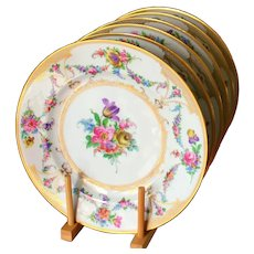 12 Antique Dresden  Dinner Plates Hand Painted Old Dresden Flowers UNUSED Near Mint 10.75''D Ca 1910