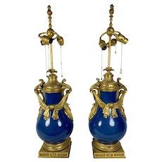 Fabulous Louis XV Style Powder Blue Urns As Lamps