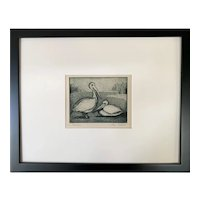 Vintage Two Pelican Birds Monochrome Etching Print Alex Soboll