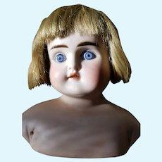 """Unmarked vintage bisque head doll 17"""""""