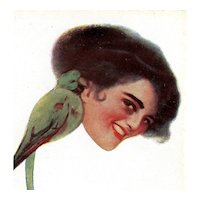 Italian, unposted, artist signed Tagnotta postcard of glamour woman and parrot
