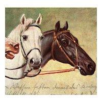 German postcard of three horses mailed 1914