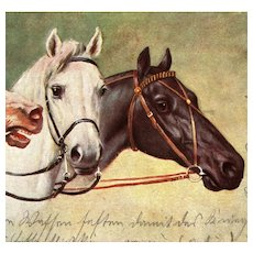 German postcard of three horses mailed 1914