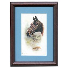 Framed to reveal both sides, British, artist signed Wright postcard of fox hunting horse