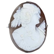 Large 9 carat shell cameo, Victorian